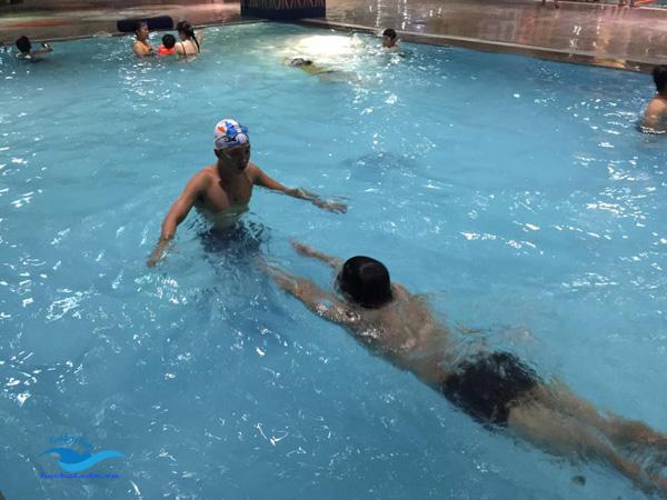 hướng dẫn học bơi bướm đúng kỹ thuật