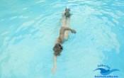bơi sải đẹp và đúng kỹ thuật