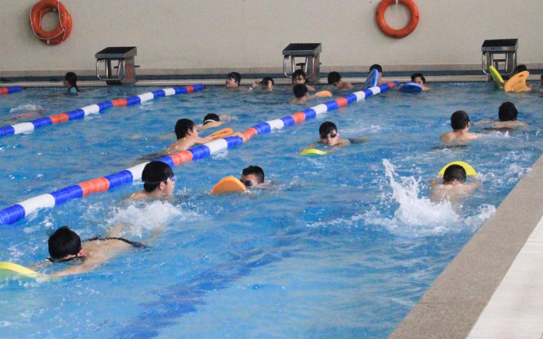 Kết quả hình ảnh cho Những kinh nghiệm bơi trườn sấp